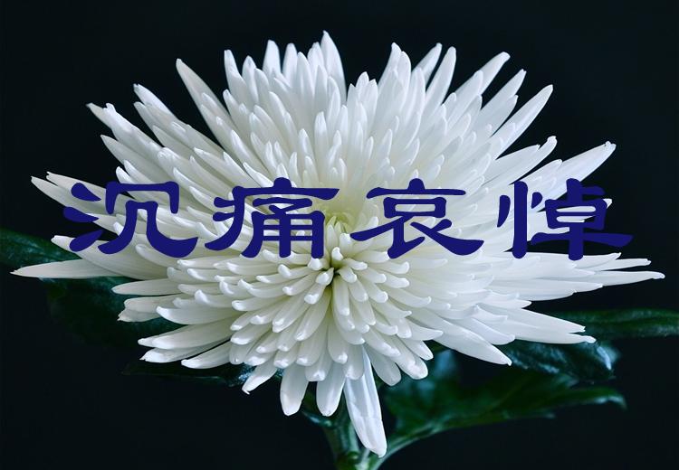 白菊(哀悼).jpg
